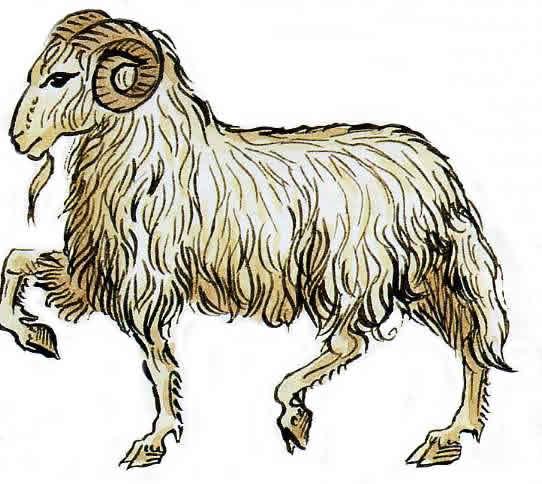 Predicciones para el signo Cabra en 2013