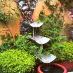 Jardin Feng Shui Group Picture Image By Tag - Decoration Jardin Feng ...