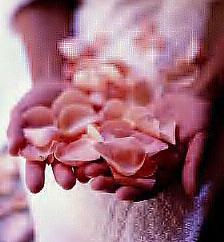 Flores de Bach para Mujeres